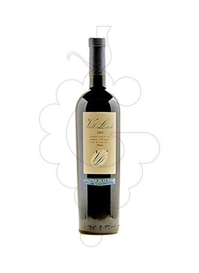 Photo Vall Llach red wine