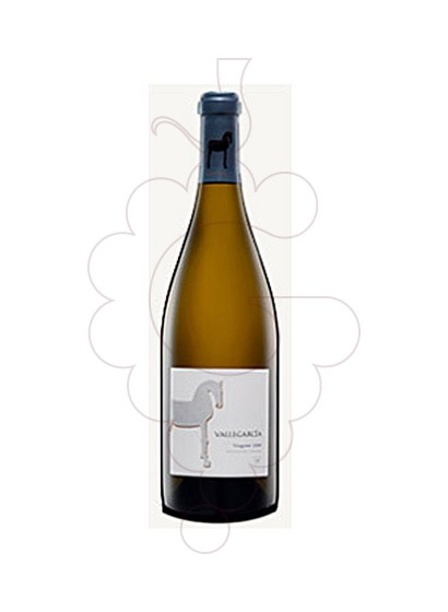 Photo Vallegarcia Viognier Magnum white wine