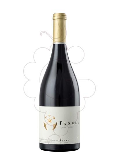 Photo Ventisquero Pangea Syrah red wine
