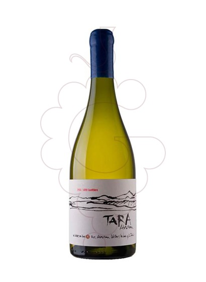 Photo Ventisquero Tara White Wine 1 white wine