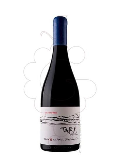 Photo Ventisquero Tara Red Wine 2 red wine