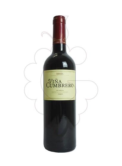 Photo Viña Cumbrero Crianza red wine