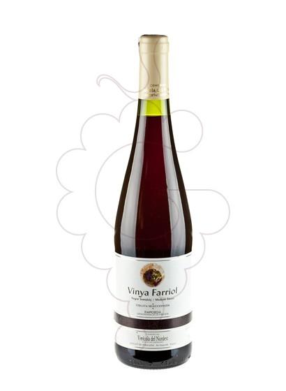 Photo Viña Farriol Negre Semi red wine