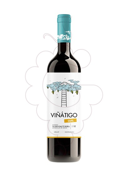 Photo Viñatigo Gual Blanc white wine