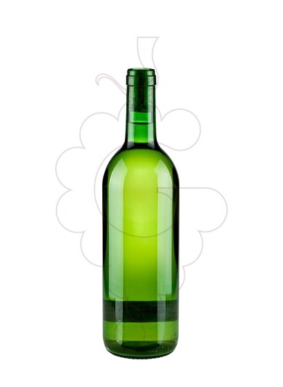 Photo Vinho Turbio Xoven white wine