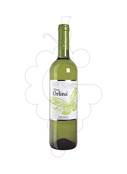 Photo Vinya Orlina Blanc white wine