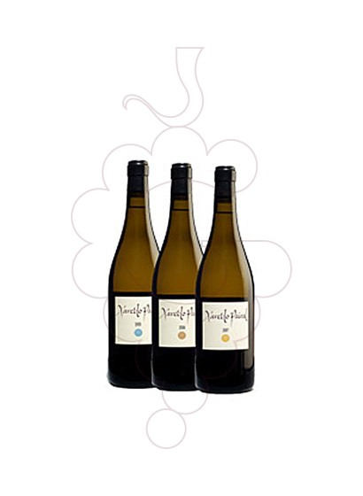 Photo Xarel.lo Pairal 3 amp Cata Vertical 05-06-07 white wine